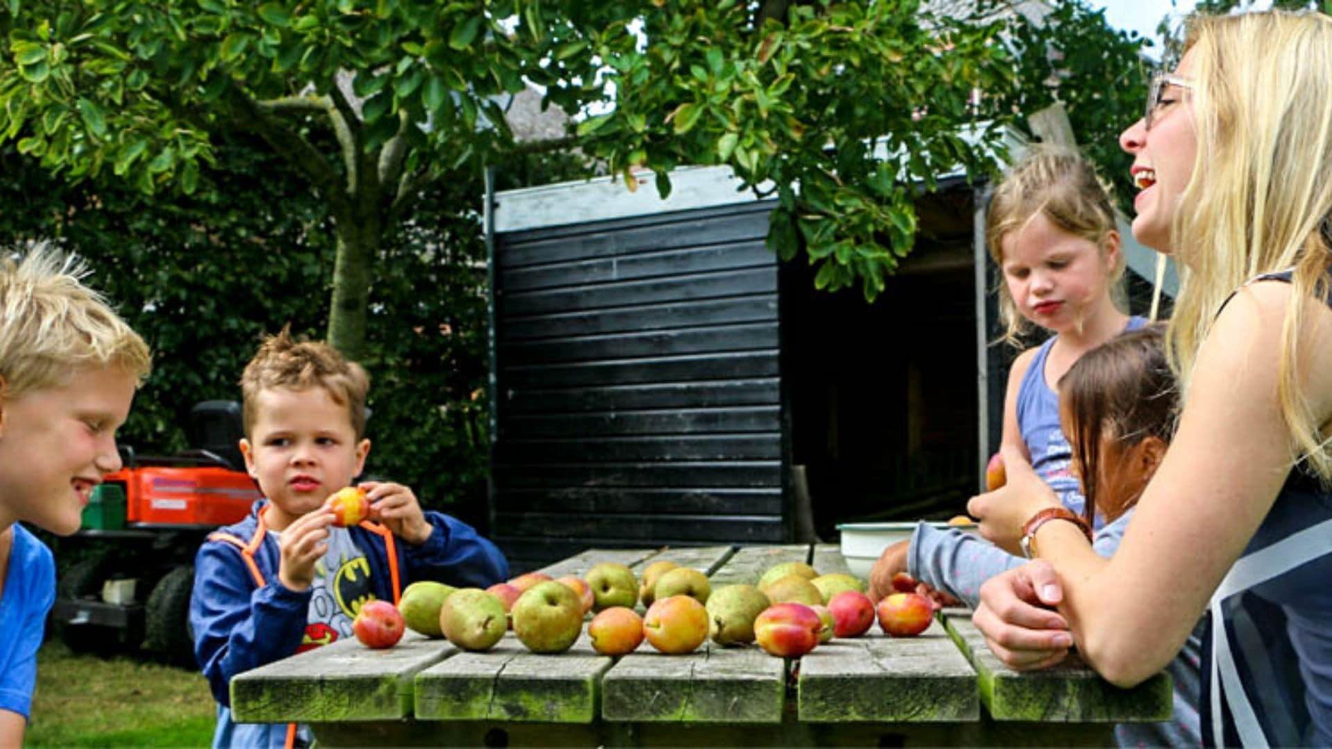 Boomgaard-Kinderopvang-De-Hooijbergh